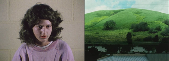 James Benning Landscape Suicide Ed Gein serial killer cinema sperimentale cinema contemplativo cinema d'avanguardia anni '70