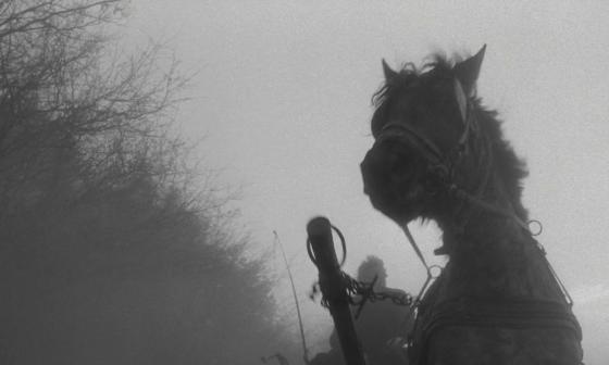 il cavallo di torino tarr recensione analisi lo specchio scuro nicolò vigna incipit