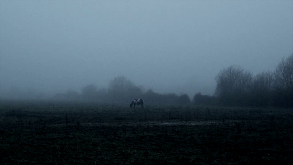 The Ethereal Melancholy of Seeing Horses in the Cold Scott Barley Recensione Analisi Lo Specchio Scuro