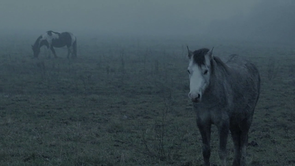 The Ethereal Melancholy of Seeing Horses in the Cold Scott Barley lo specchio scuro Analisi recensione