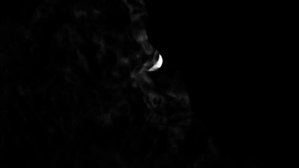 Polytechnique Scott Barley lo specchio scuro Analisi recensione
