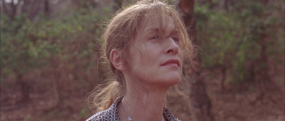 claire denis white material