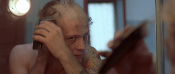 claire denis white material 5