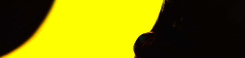 Lo specchio scuro applesauce gaspar no 2013 recensione for Lo specchio scuro