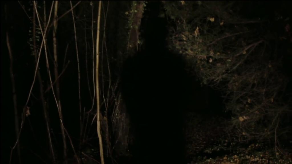 Applesauce Gaspar Noé analisi recensione lo specchio scuro We No Who U R Nick Cave