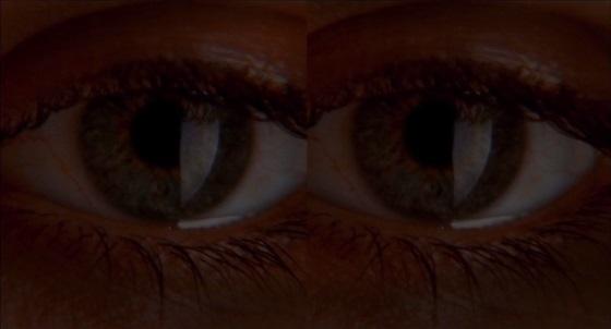 dans ma peau split screen nella mia pelle marina de van recensione lo specchio scuro