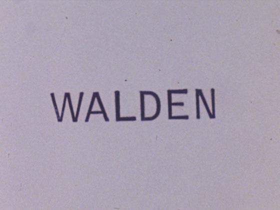 walden jonas meks analisi recensione