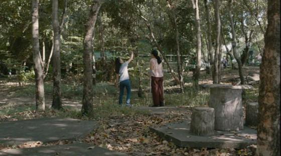 cemetery of splendour - 12
