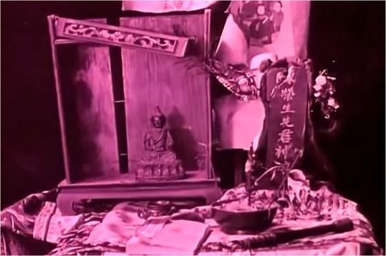 giglio-infranto-specchio-scuro-altra-immagine-2
