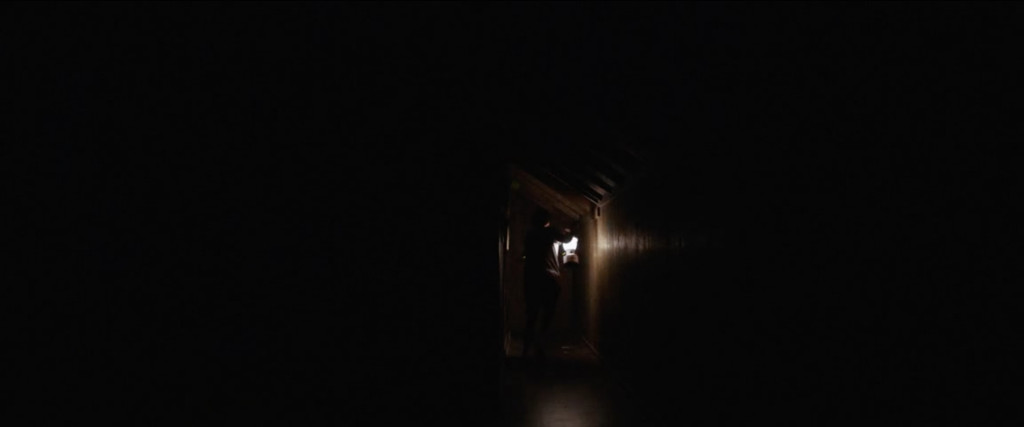 It Comes at Night 4