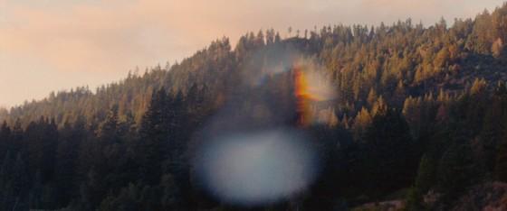 woodshock - 37
