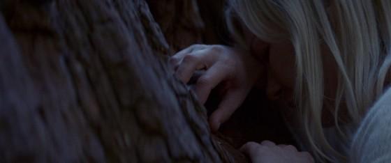 woodshock - 4