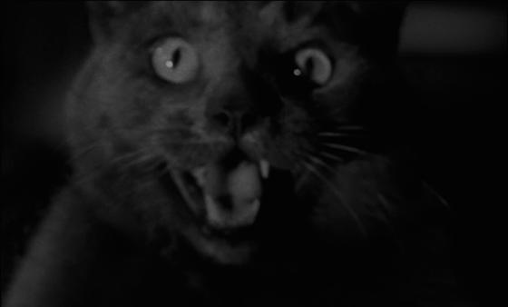 la notte del demonio5