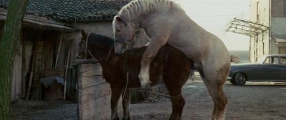 Borowczyk the beast review venus in furs dallamano